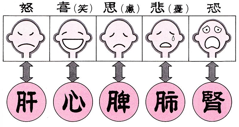 五臓が影響受ける精神的ストレス